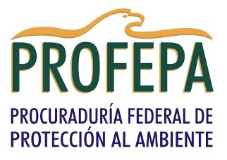 Consultoría, Estudios de gabinete y Proyectos en Medio Ambiente