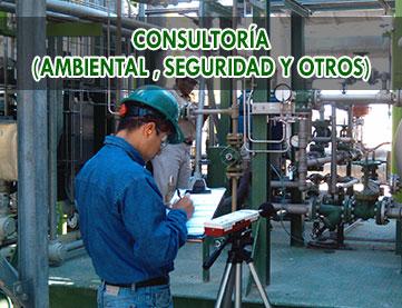 consultoria-ambiental-seguridad-y-otros