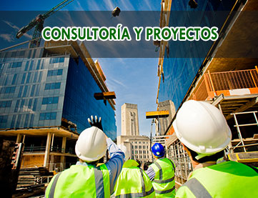consultoria-y-proyectos
