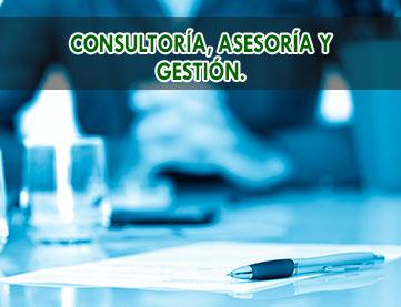 consultoria-asesoria-y-gestion